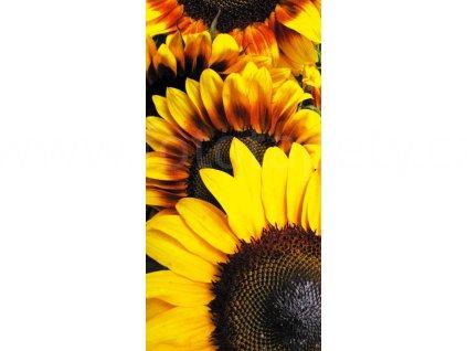 Samolepící fototapeta na podlahu - Slunečnice, 85x170cm, 005