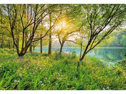 Jarní jezero, National geographic fototapeta, 368x254cm, 8D 8-524