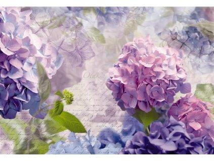 Osmidílná obrazová tapeta Otaksa 368x254cm, 8D 8-705