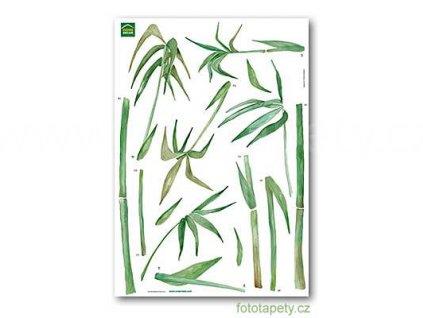 Samolepky na zeď Bambus, 70x100cm