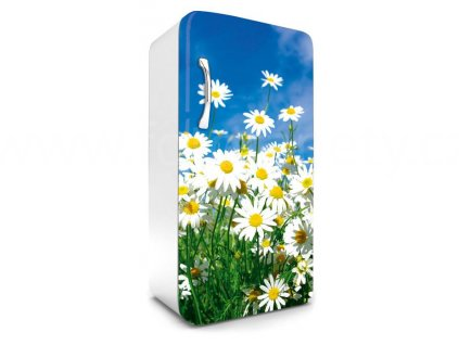 Samolepící fototapeta na lednici - Kopretiny, 65x120cm, 011