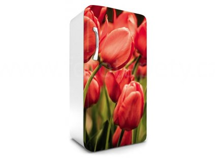 Samolepící fototapeta na lednici - Červené tulipány, 65x120cm, 012