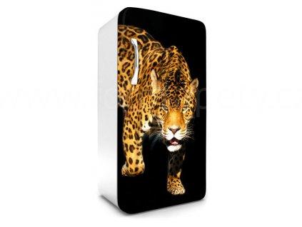 Samolepící fototapeta na lednici - Panther, 65x120cm, 017