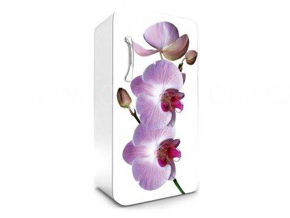 Samolepící fototapeta na lednici - Orchidej, 65x120cm, 024, skladem 1ks!!