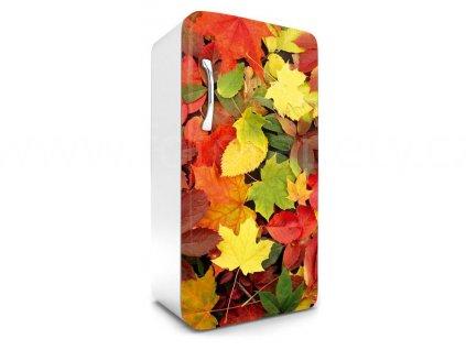 Samolepící fototapeta na lednici - Podzimní listí, 65x120cm, 025
