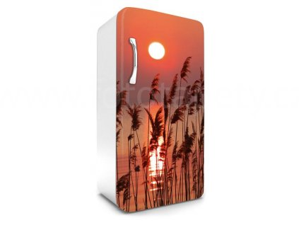 Samolepící fototapeta na lednici - Rákos u jezera, 65x120cm, 027