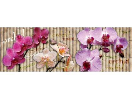 Samolepící fototapeta do kuchyně - Orchidej, 180x60cm, 026