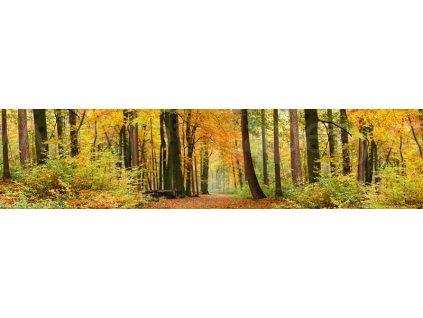 Samolepící fototapeta do kuchyně - Podzimní les, 260x60cm, 045
