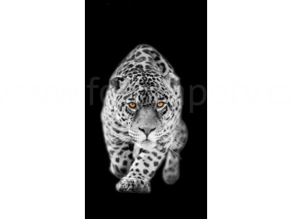 Foto závěs Leopard, 140x245cm