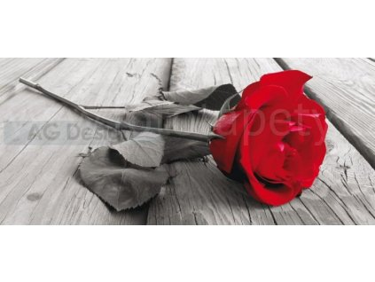 Panoramatická vliesová fototapeta Červená růže FTN h 2717, rozměr 202x90cm