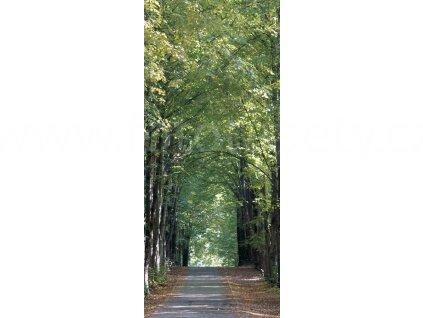 Jednodílná vliesová fototapeta Alej stromů FTN v  2807, rozměr 90x202cm