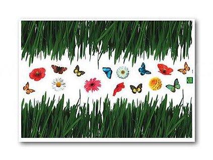 Dekorační samolepka Tráva a motýl, 70x100cm, doprodej