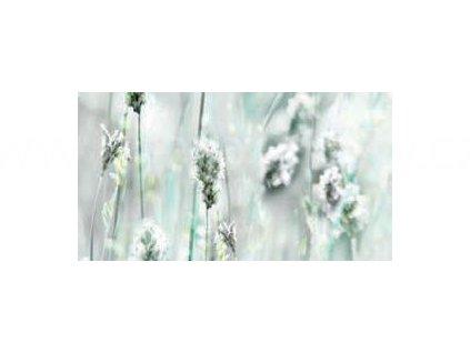 Samolepící tapeta d-c-fix Decor, vzor Bílé květiny, DOPRODEJ!