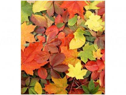 vliesová fototapeta Podzimní listí