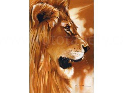 Plakát XXL Papermoon - Lion , 175x115 cm, skladem poslední 1 ks!!!
