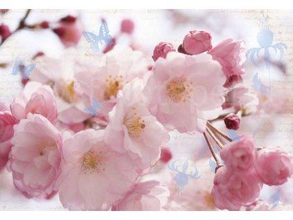 Plakát XXL Papermoon - Cherry blossom, 175x115 cm, skladem poslední 1 ks