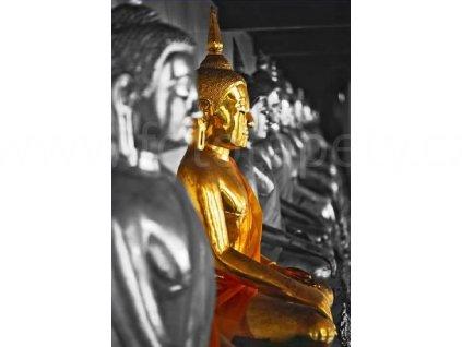 Plakát XXL - The golden Buddha, 175x115 cm, skladem poslední 1 ks