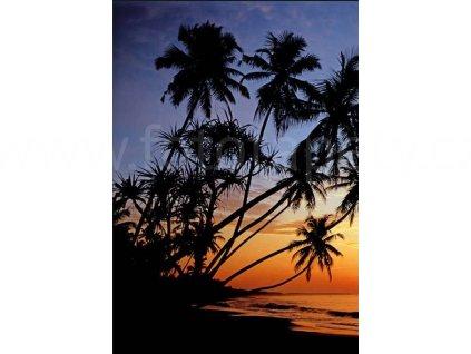 Čtyřdílná fototapeta Sunset beach, 183x254 cm, skladem poslední 2 ks!!!