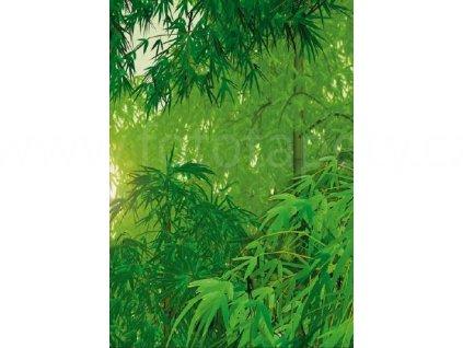 Čtyřdílná fototapeta Bamboo II, 183x254 cm, skladem poslední 1 ks!!!