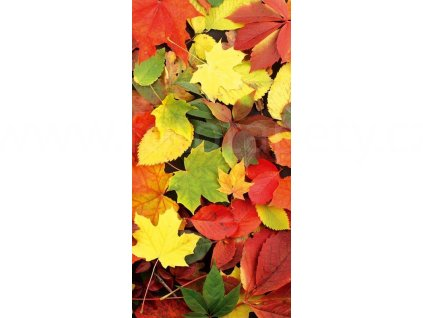 Dvoudílná vliesová fototapeta Podzimní listí, rozměr 150x250cm, MS-2-0115