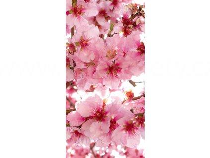 Dvoudílná vliesová fototapeta Květy jabloně, rozměr 150x250cm, MS-2-0108
