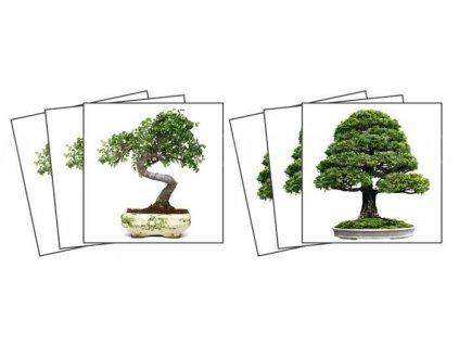 Dekorace na kachličky, vzor Bonsai, 15x15cm