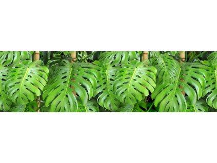 Samolepící bordura - Zelené listy, 14cm x 5m,  WB 8219