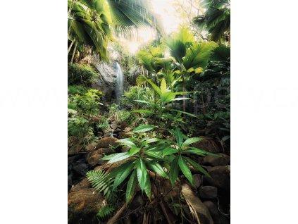 Dvoudílná vliesová fototapeta Džungle, 184x248cm, XXL2-527