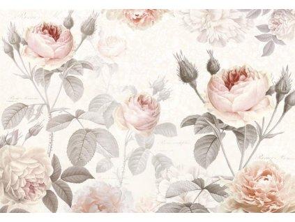 Čtyřdílná vliesová fototapeta Růže, 368x248cm, XXL4-034