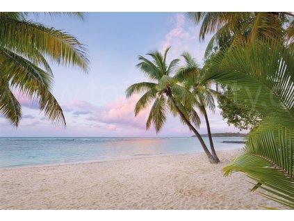 Čtyřdílná vliesová fototapeta Paradise morning, 368x248cm, XXL4-528