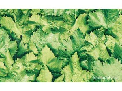 Samolepící folie - Listy - imitace přírodního materiálu