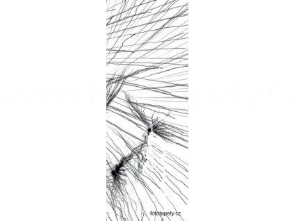 Samolepící velkoplošná nálepka - Pampeliška, 100x270cm