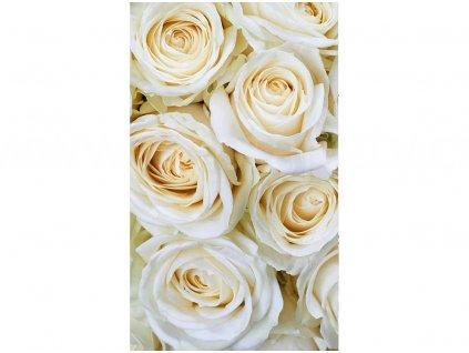 fototapeta Bílé růže