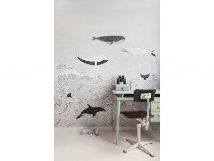 Vliesový panel na zeď Rasch 842531 - Velryba, kosatka, kolekce Bambino XVIII 200 x 280 cm