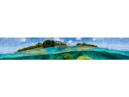 KI 350 013 coral reef