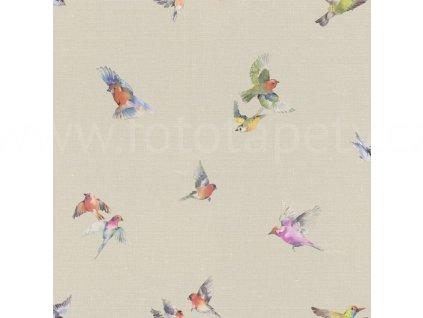 Vliesová tapeta na zeď Rasch 401158 - Ptáčci, kolekce Lazy Sunday II 0,53 x 10,05 m