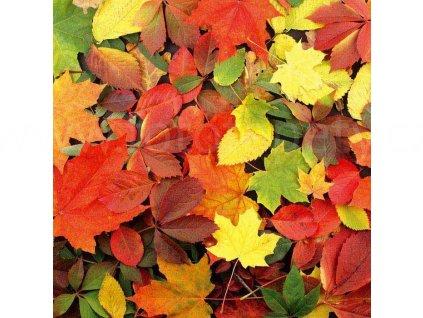 Samolepící fototapeta na podlahu - Podzimní listy, 170x170cm, 002