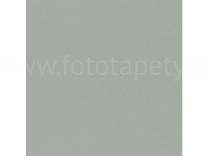 Vliesová tapeta na zeď Rasch, kolekce Crispy paper, 527032