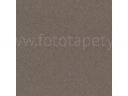 Vliesová tapeta na zeď Rasch, kolekce Crispy paper, 527049