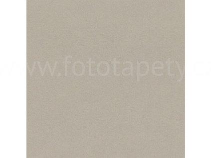 Vliesová tapeta na zeď Rasch, kolekce Crispy paper, 527056