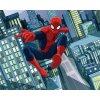 Dětská 3D fototapeta Ultimate Spiderman 2, rozměr 244x305cm