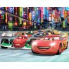 Dětská 3D fototapeta Disney Auta rozměr, 244 x 305 cm