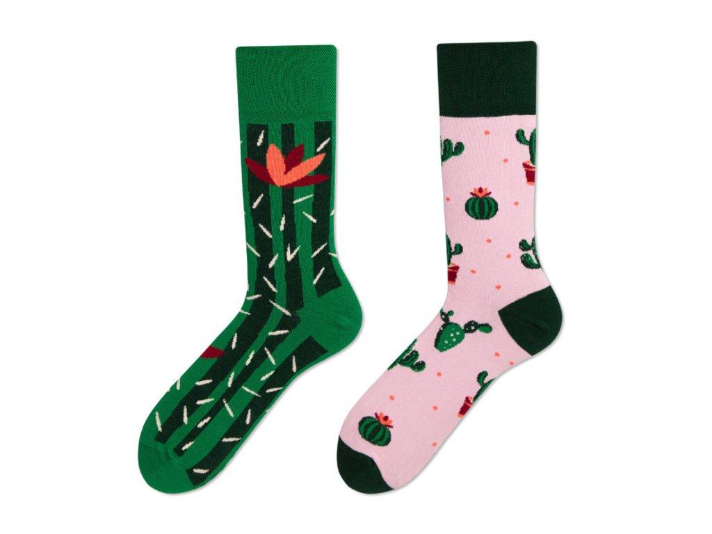Four Seasons veselé ponožky Kaktus