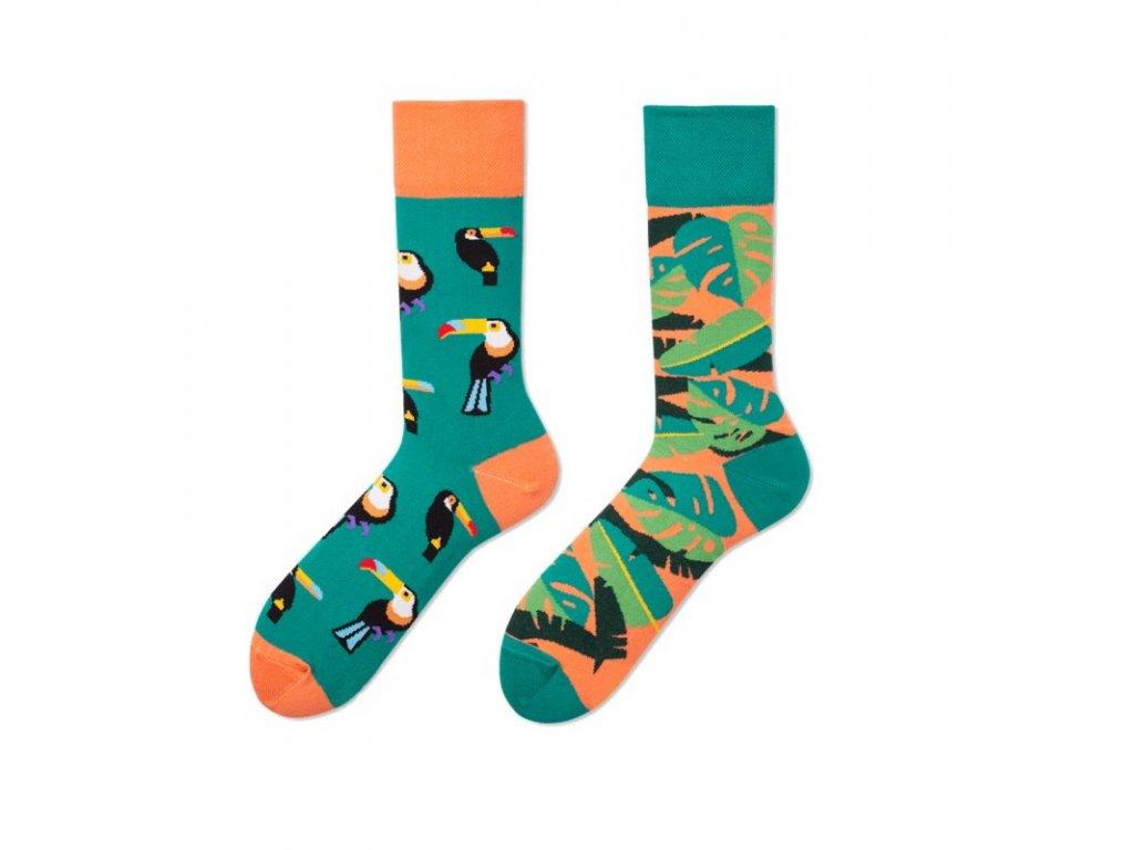 Four Seasons veselé ponožky Tropický les