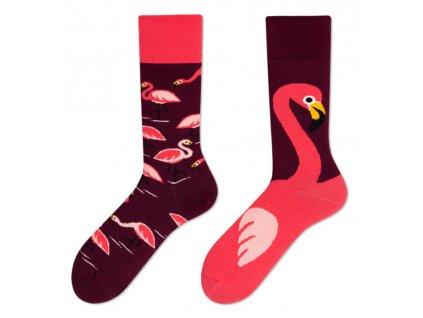 Four Seasons veselé ponožky Plameňák