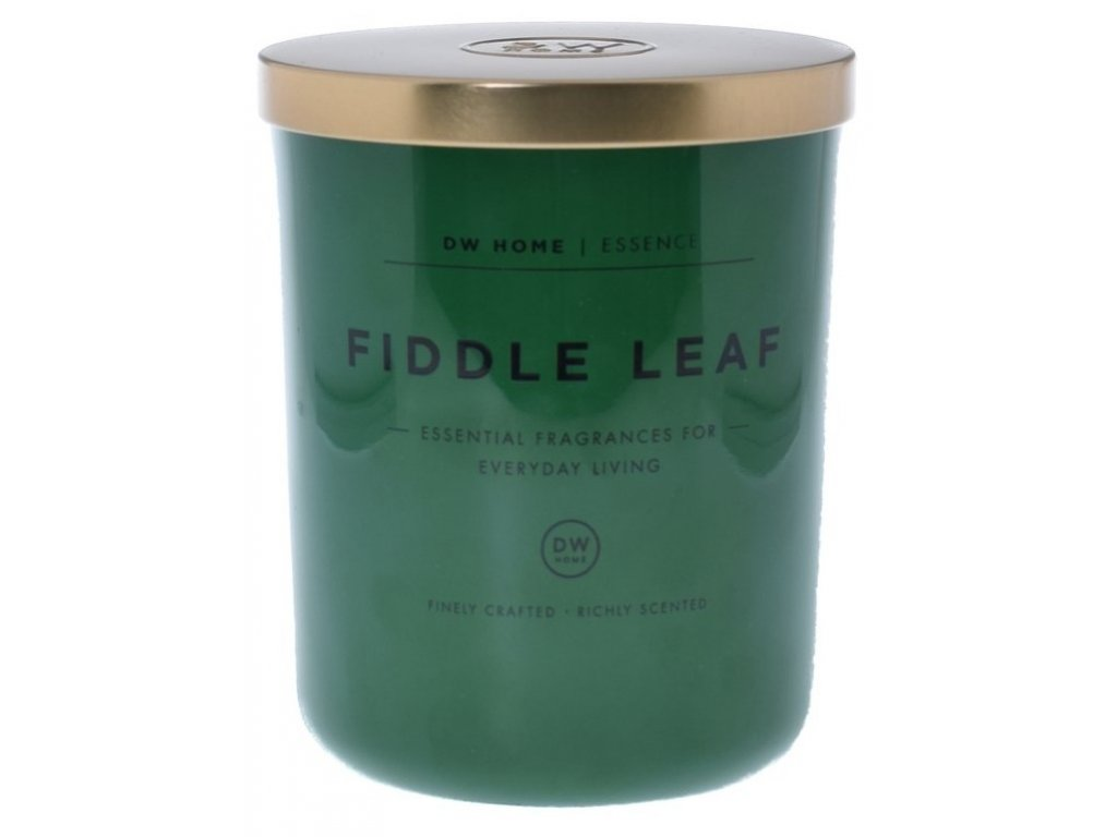 DW Home Vonná svíčka ve skle Fíkus - Fiddle Leaf, 15,9oz
