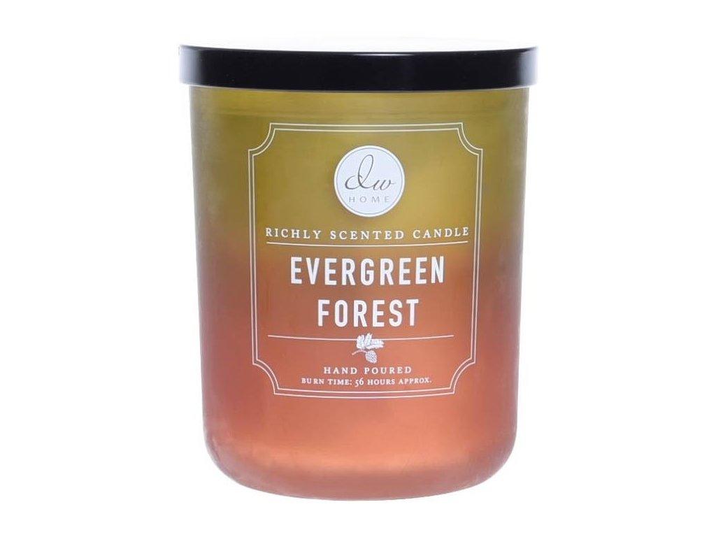 DW Home Vonná svíčka ve skle Jehličnatý les - Evergreen Forest, 15oz