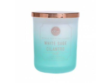 DW Home Vonná svíčka ve skle Šalvěj a Koriandr - White Sage Cilantro, 15oz