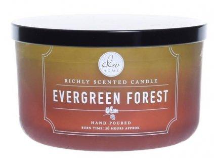 DW Home Vonná svíčka ve skle Jehličnatý les - Evergreen Forest, 13,8oz