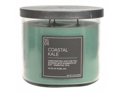Village Candle Vonná svíčka ve skle - Coastal Kale 15oz